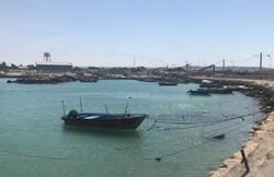 Saudi Arabia frees 19 Iranian fishermen