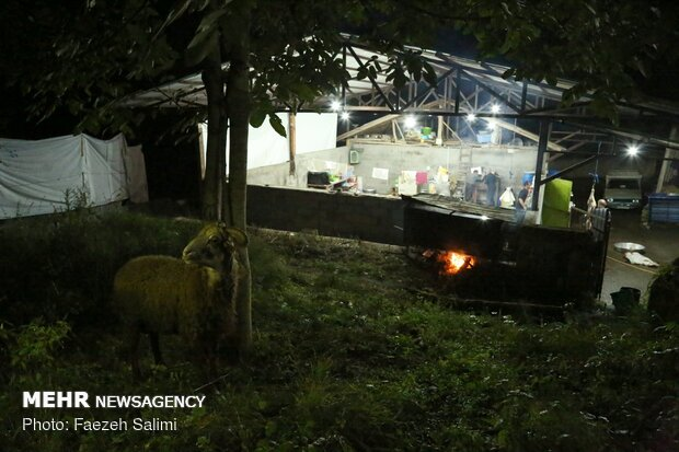 عزاداری عاشقان حسینی در روستای جنگلی سنگدرکا آمل