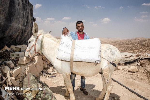 غصب زمین های فلسطینیان