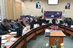 ۹۶ درصد اراضی استان سمنان سنددار شدند
