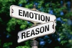 کنفرانس بینالمللی احساسات و استدلال در سوئد برگزار می شود
