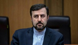 Iran laments sanctions' negative impact on fighting organized crimes