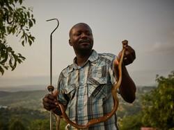 تهدید مارهای سمی در کنگو