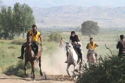 ۲ باشگاه اسبسواری در مشگینشهر راهاندازی میشود/میزبانی از جشنواره «شو سواره»