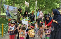 Environmental education to be included in pre-primary schools