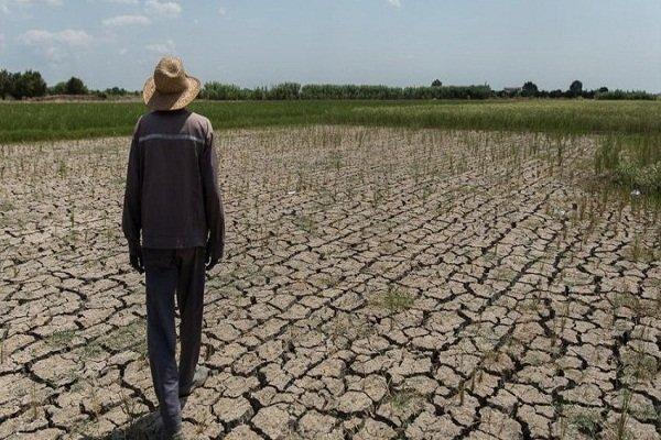 سطح ایستابی آبخوانهای استان بوشهر کاهش یافت