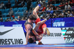 Postponing Greco-Roman World Cup 'meaningless': spox