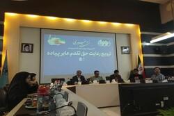 پویش «خط عابر -  خط زندگی» در شهر مشهد آغاز به کار کرد