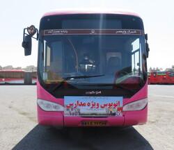 22 school bus lines set up in Tehran