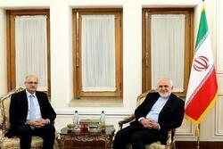 قائم مقام وزیر امور خارجه هند با ظریفدیدار کرد