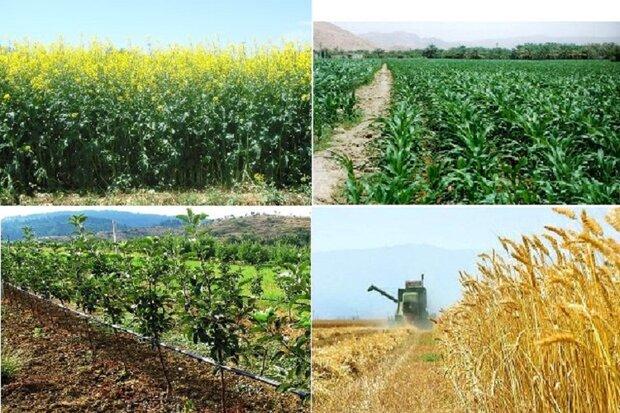 بیش از ۱۱ هزار میلیارد ریال به کشاورزان سیل زده پرداخت شد