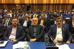 US unilateral measures endangers intl. peace: Salehi