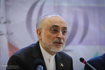 Iran to generate 3,000 MW of nuclear electricity by 2027: Salehi