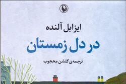Isabel Allende's 2017 novel published in Persian