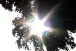 استمرارهوای گرم تاپایان هفته درگلستان/احتمال وقوع حریق در جنگل ها