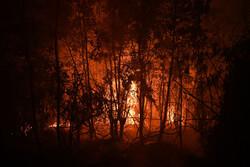 آتش سوزی جنگل خسرج مهار شد / اعلام آماده باش به یگانهای ارتش