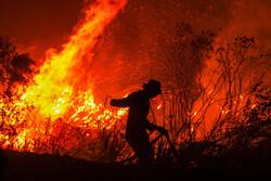 """حرائق واسعة تلتهم مناطق في """"أندونيسيا"""" /صور"""