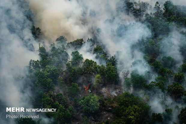 آتش سوزی گسترده در اندونزی