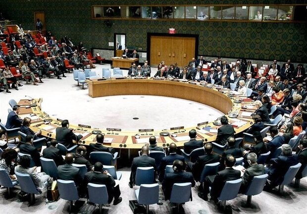Tehran warns UNSC members not to fall into US' trap