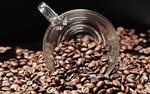 عصاره دانه قهوه ,التهاب