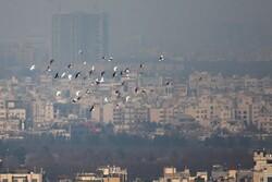 هشدار آلودگی هوا برای شهروندان مشهدی