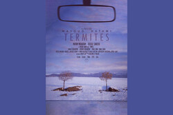 'Termites' wins 2 awards at Figura filmfest. in Portugal