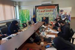 بومی سازی و کشت ۸ گونه گیاهی در استان تهران طی سال جاری