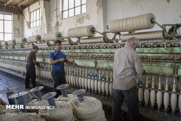Wool yarn production process