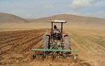 رتبه اول مازندران در ضریب کشت کشاورزی