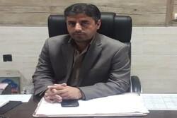 طرح توانمندسازی جوامع محلی در حوزه آبخیز گیودری و روستای راویز رفسنجان اجرا می شود
