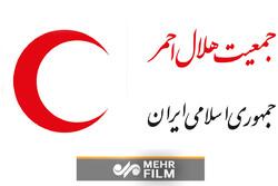 ماجرای تخلفات در هلال احمر از زبان سخنگوی دولت