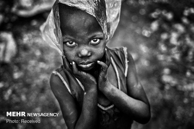 برندگان مسابقه عکاسی محیط زیست 2019