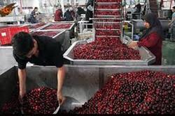 شهرکهای صنایع غذایی آذربایجانشرقی۱۲هزار فرصت شغلی ایجاد میکنند