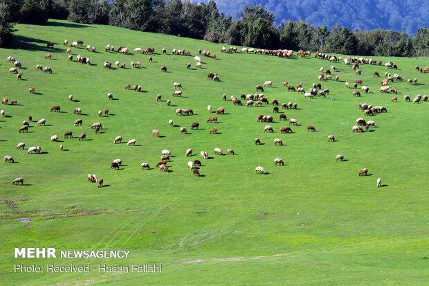 سوها؛ نگین درخشان کوه های نمین اردبیل