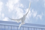 پرنده رباتی به پرواز در آمد