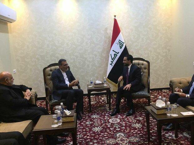 Iran's deputy FM, Iraqi parl. speaker discuss Arbaeen cooperation