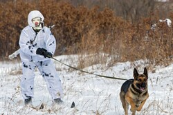 عملیات نیروهای ویژه روسیه در مجمعالجزایر «اسپیتزبرگن»!