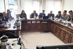 سهم ۲۱.۲ درصدی بخش کشاورزی در اشتغال آذربایجانشرقی