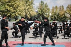 'IPAS 2019' expo opens in Tehran