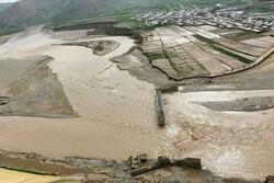 خسارت ۱۳۰۰ کشاورز سیلزده پلدختری تا دو روز آتی پرداخت میشود