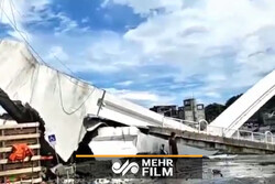 VIDEO: Bridge in Taiwan collapses into harbor