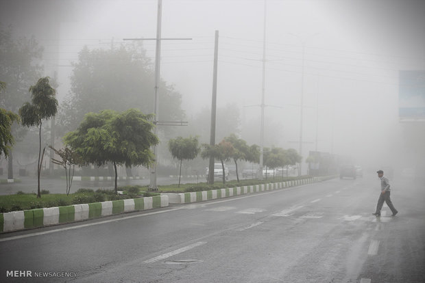 رطوبت بالای هوا در استان بوشهر تا پایان هفته جاری ادامه دارد
