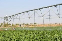سیستم آبیاری نوین در ۲۲۰۰هکتار اراضی کشاورزی استان سمنان اجرا شد