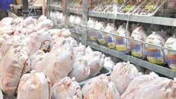 برخورد با مرغداران در صورت رعایت نکردن قیمت مصوب ستاد تنظیم بازار