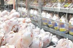 افزایش کیفیت مرغ منوط به ارتقای رتبه کشتارگاههای طیور است