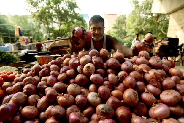 هند صادرات پیاز را ممنوع کرد