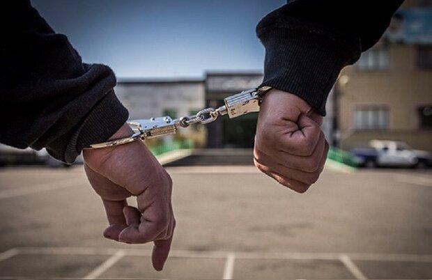 دستگیری ۱۰سارق و کشف ۱۳ فقره سرقت در اسدآباد
