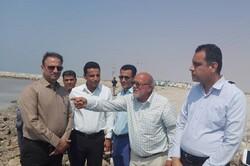 شادابی و رونق اقتصادی شهرهای استان بوشهر دنبال میشود
