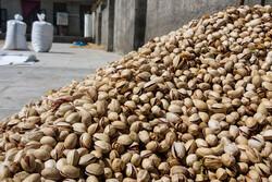 انبارهای مملو از پسته و خرما بدون خریدار/ جایی برای ذخیره محصول نیست