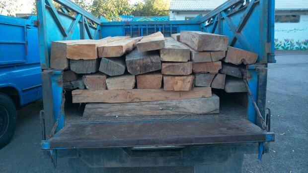 کشف ۲۱۰ راس دام و ۶۰ تن چوب قاچاق در ملایر